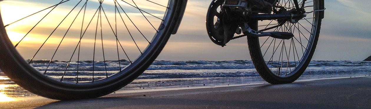 Fahrrad aktiv Rügen